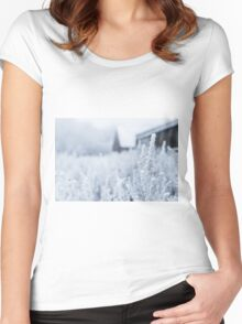 Snowy Plant Field Nature Fine Art Photography 0014 Women's Fitted Scoop T-Shirt