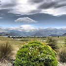 Lake Wanaka from Our Apartment ( 8 ) by Larry Lingard-Davis