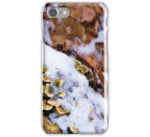 Cold Fungus iPhone Case/Skin