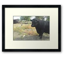 The Applicant Framed Print
