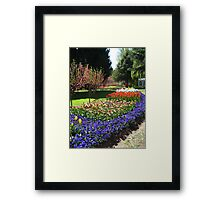 Tulip Time in Australia 15 Photograph by Heather Holland Framed Print
