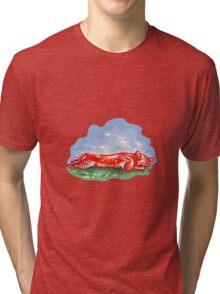 Lechon Roast Pig WPA Tri-blend T-Shirt