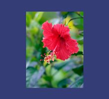 Rose Red Hibiscus Beauty Womens Fitted T-Shirt