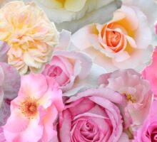 Spring Roses Sticker