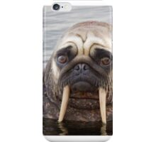 Walrus pug iPhone Case/Skin