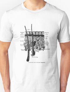 Organs of the Skin. Unisex T-Shirt