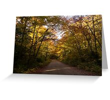 Forest Road - a Joy Ride Into Autumn Greeting Card