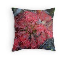 Carnivorous Sun Dew plant Throw Pillow