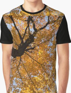 Golden Canopy - Twisted Tree Trunk Horizontal Graphic T-Shirt