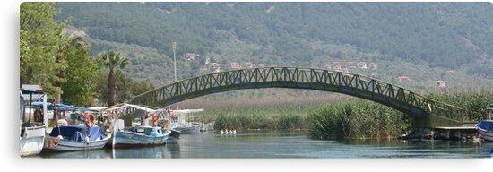 Kadin Azmak River, Akyaka Turkey by taiche