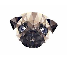 Pug Diamonds Photographic Print