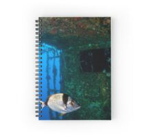 Diver at the MS Zenobia shipwreck. Spiral Notebook