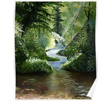 Woodland Stream Oil Painting Poster