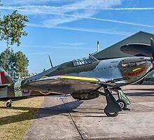 "Hawker Hurricane IIc PZ865/JX-E G-AMAU ""Night Reaper"" by Colin Smedley"
