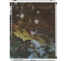 Forest Stream iPad Case/Skin
