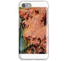 Mooney Falls iPhone Case/Skin