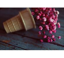 flower cone II Photographic Print