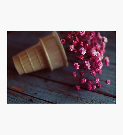 flower cone II Photographic Print