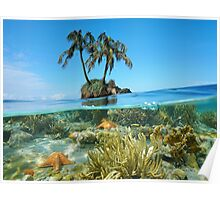 Coconut tree islet with coral and starfish underwater Poster