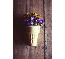 flower cone III Photographic Print