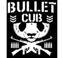 Bullet Cub (Club) / Finn Balor 8 bit pixel NXT Photographic Print