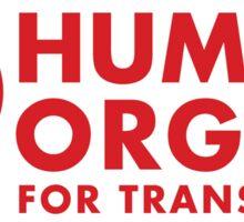 Human Organ Sticker