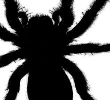Spider vector Sticker
