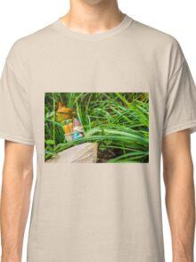 Fall Walk Roy Classic T-Shirt
