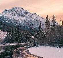 morning light on the creek by tara romasanta