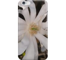 Spring afternoon Canberra iPhone Case/Skin
