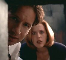 Mulder & Scully by mermishh