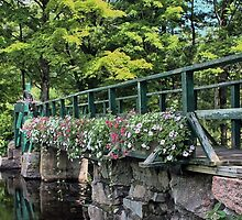 Petunias - Footbridge Crossing Stevens Brook by T.J. Martin