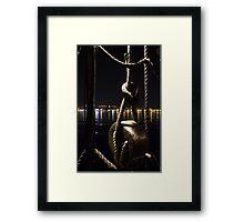 Night sailor Framed Print