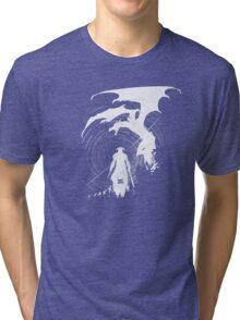 Dragon Fighter Tri-blend T-Shirt