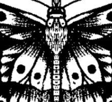 harrys butterfly tattoo Sticker