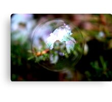 One Bubble, One Photographer Canvas Print