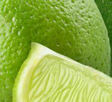 Limes Sticker