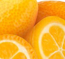 Kumquat fruits Sticker