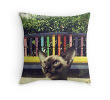cat park Throw Pillow