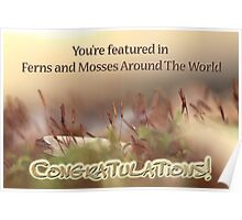 NOT FOR SALE - Featured Banner for Ferns and Mosses Poster
