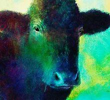 Black Cow by art64