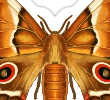 Saturna Moth Butterfly Sticker