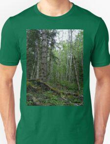Rainforest Walk in Olympic National Park Unisex T-Shirt