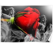 Passionate Red Hot Smoky Rose Poster