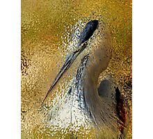 Life In The Sunshine Bird Art Abstract Realism Photographic Print