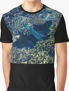 Tropical fishes in the Maldives, Laccadivian Sea Graphic T-Shirt