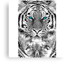 Blue Eyes for a Tiger Canvas Print