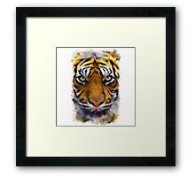 Eyes Of The Tiger Framed Print