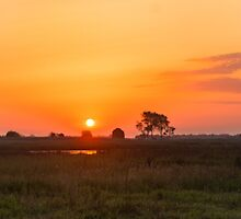 Sunset over the meadow by homydesign
