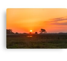 Sunset over the meadow Canvas Print